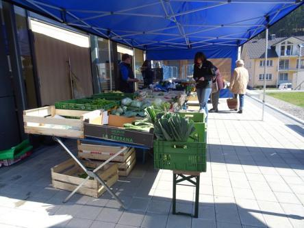 Wochenmarkt in Oberwolfach